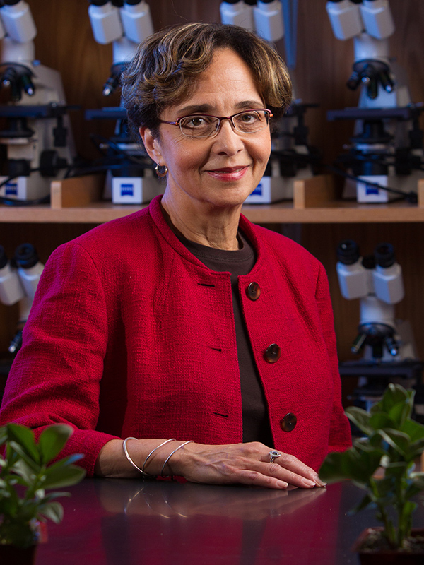 Muriel Poston, Professor of Environmental Analysis