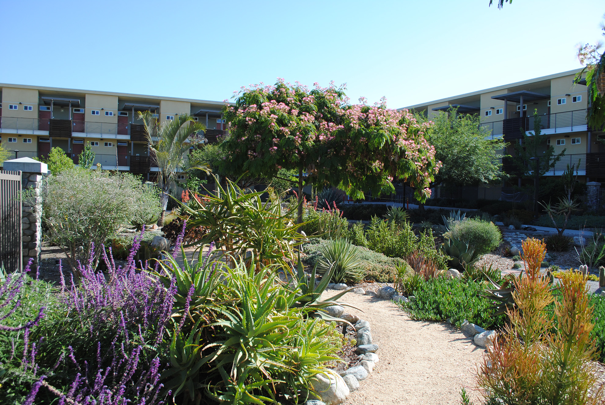 Gardens surrounded by Pitzer, Atherton and Sanborn Halls