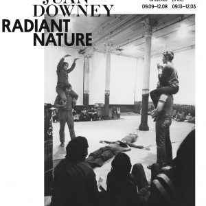 Juan Downey Radiant Nature Exhibition