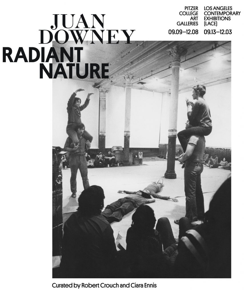 Juan Downey Radiant Nature