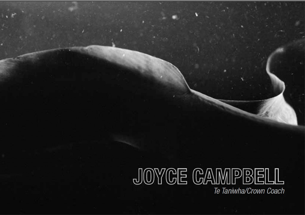 Catalogue cover - Joyce Campbell: Te Taniwha/Crown Coach