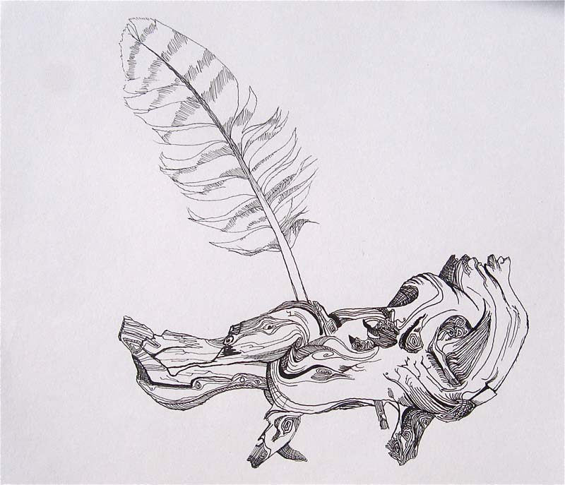 Feather in a Knot (2009), Ink on paper, 9 x 12 inches, Courtesy of the artist