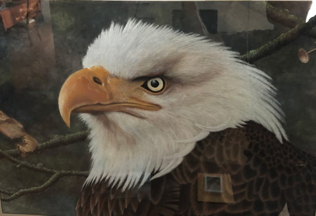 Stan Hunter, Majestic, 1996, pastel on paper