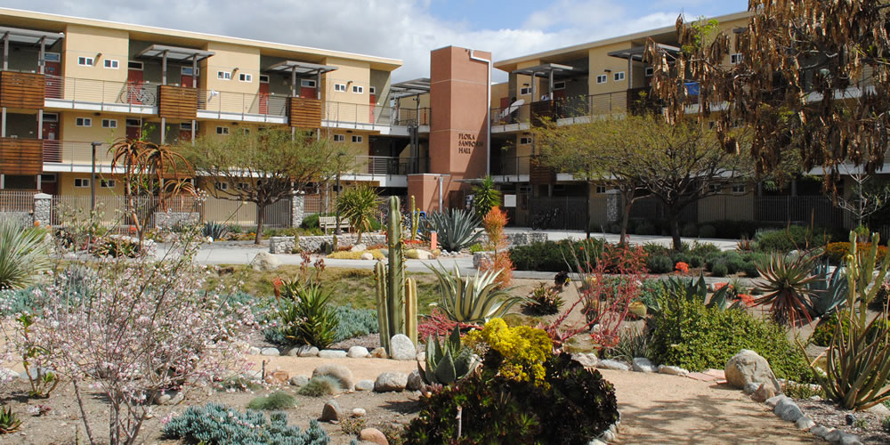 Drought-tolerant landscaping around PAS Halls