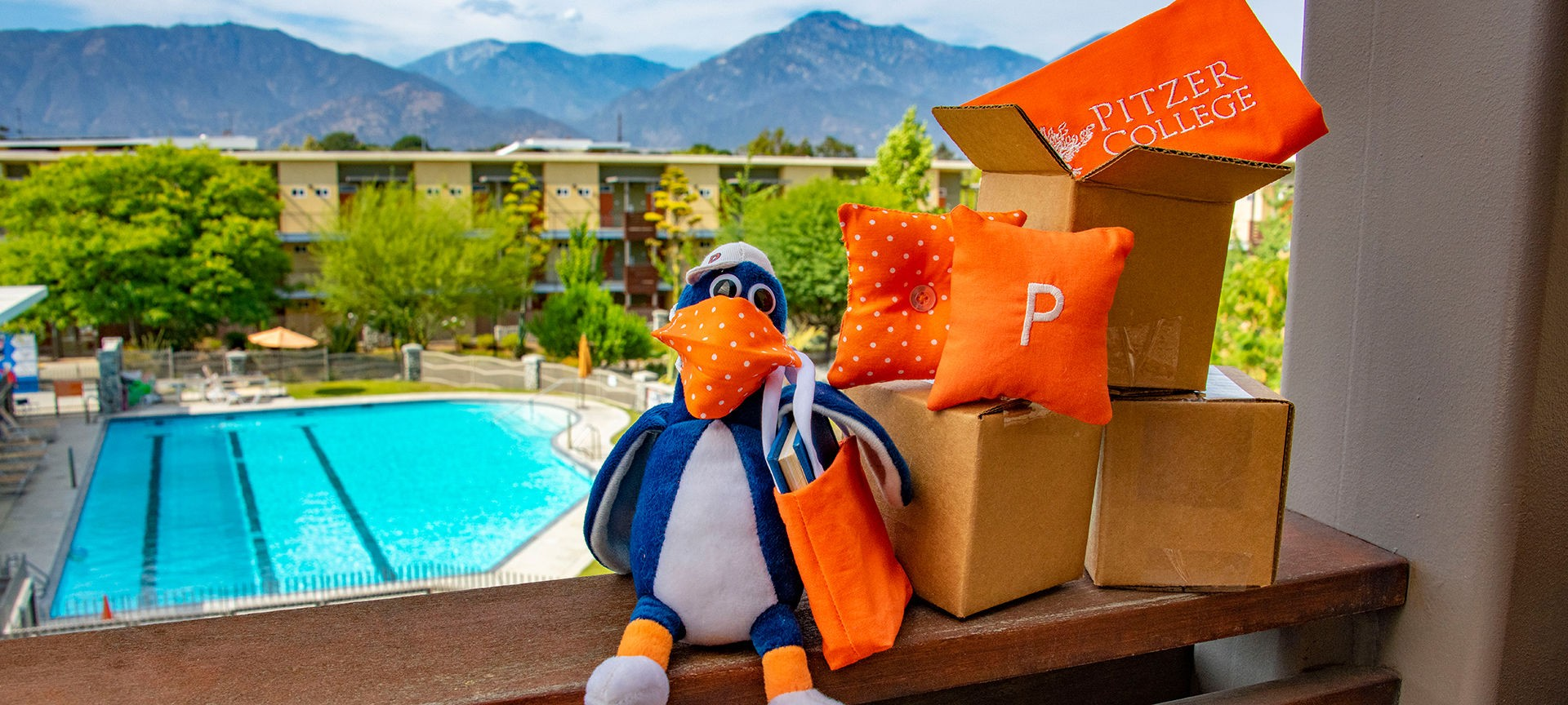 Cecil T Sagehen moving onto Pitzer's campus